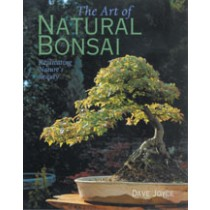 The Art of Natural Bonsai Replicating Nature's Beauty David Joyce