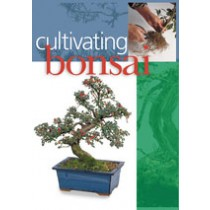 CULTIVATING BONSAI