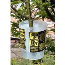 Rooter Pot -Small-5 pack